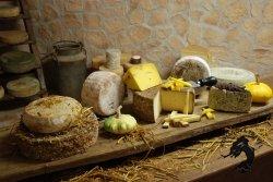 сырная ферма светлояр