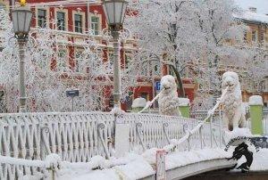 Зима в Петербурге