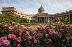 27.06-02.07.2017 Санкт-Петербург. Город белых ночей